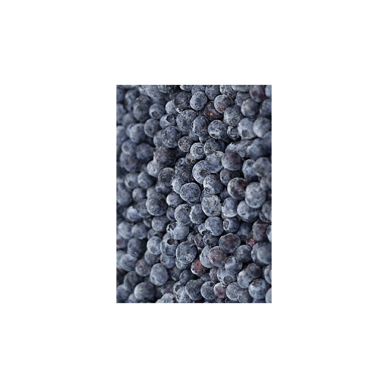 Burůvky kanadské-kultivované mražené 2,5kg