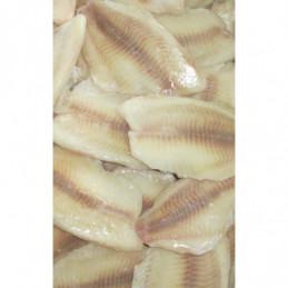 Tilápie filety IQF glaz.do 20% 80-130g balení 5kg