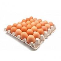 Vejce a náhrady vajec